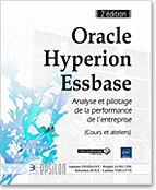 Oracle Hyperion Essbase, bi, décisionnel, olap, molap, aso, smart view , LNEP2OHEM